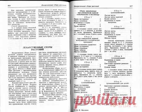 Gallery.ru / Фото #1 - Махлаюк Лекарственные растения (сборы) - Clematis