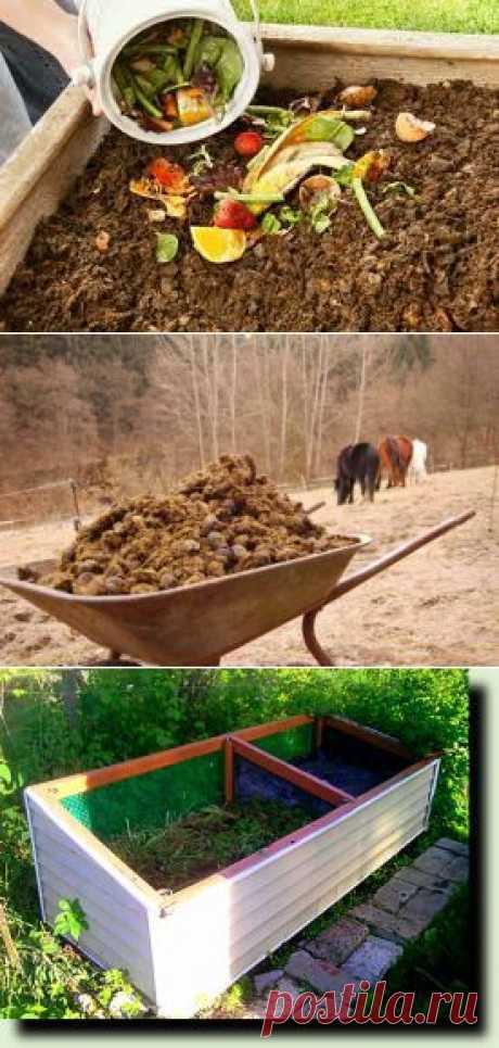 Самые доступные органические удобрения для дачи