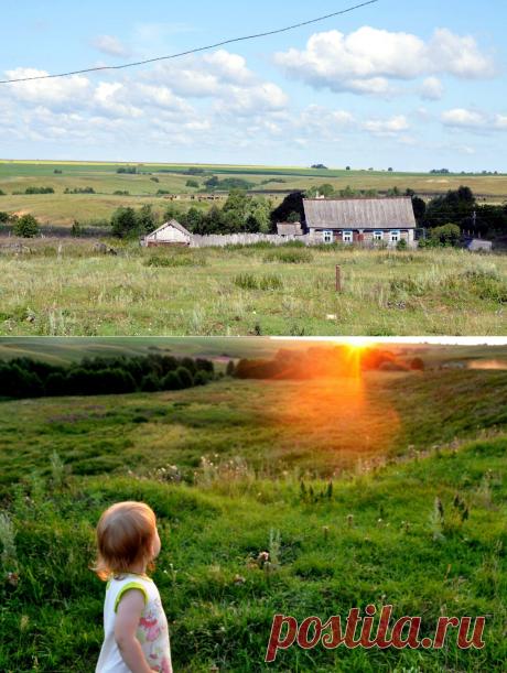 Если у Вас есть сад или домик в деревне, можно хорошо заработать в новых условиях | ЛюбовьОнаТакая | Яндекс Дзен