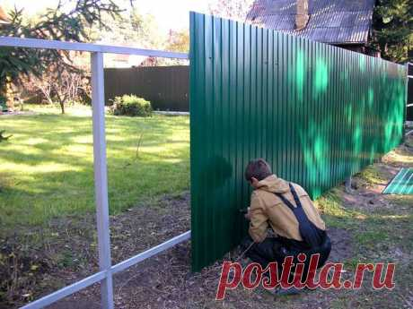 Почему между соседними участками не стоит ставить забор из профнастила? | 6 соток