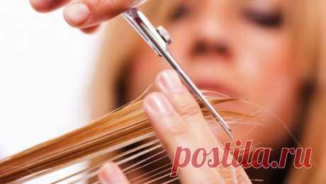 Поиск на Постиле: приметы о волосах