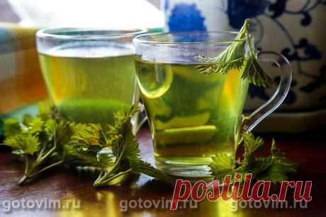 Чай из свежей крапивы. Рецепт с фото