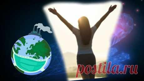 Влияние окружающей среды на человека. Особенности современной жизни | В здоровом теле здоровый дух | Яндекс Дзен