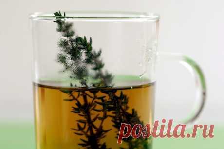 Чай - природное богатство