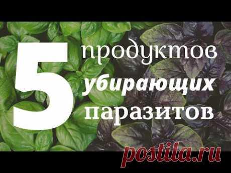 🔥 ТОП 5 Продуктов Убирающих Паразитов Навсегда. Как быстро вывести паразитов