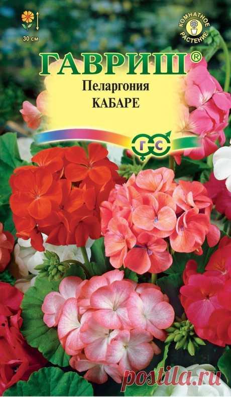 """Пеларгония """"Кабаре F2 зональная"""""""
