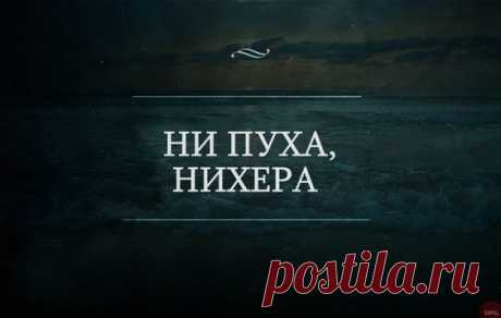 (268) Pinterest