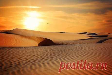 Заблуждения о пустынях Наши представления о пустыне связаны с жарой, отсутствием воды, безоблачным небом, безжалостно палящим солнцем. Но не во все времена года пустыни такие. Мало того, не все пустыни являются жаркими, существуют также холодные арктические пустыни …