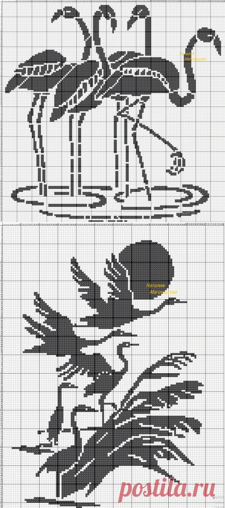 Филейное птичье царство.