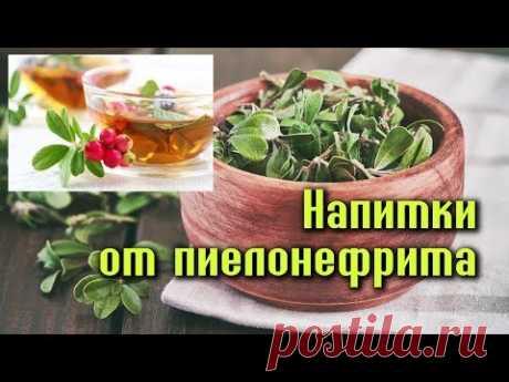 3 НАПИТКА для лечения ПИЕЛОНЕФРИТА - YouTube