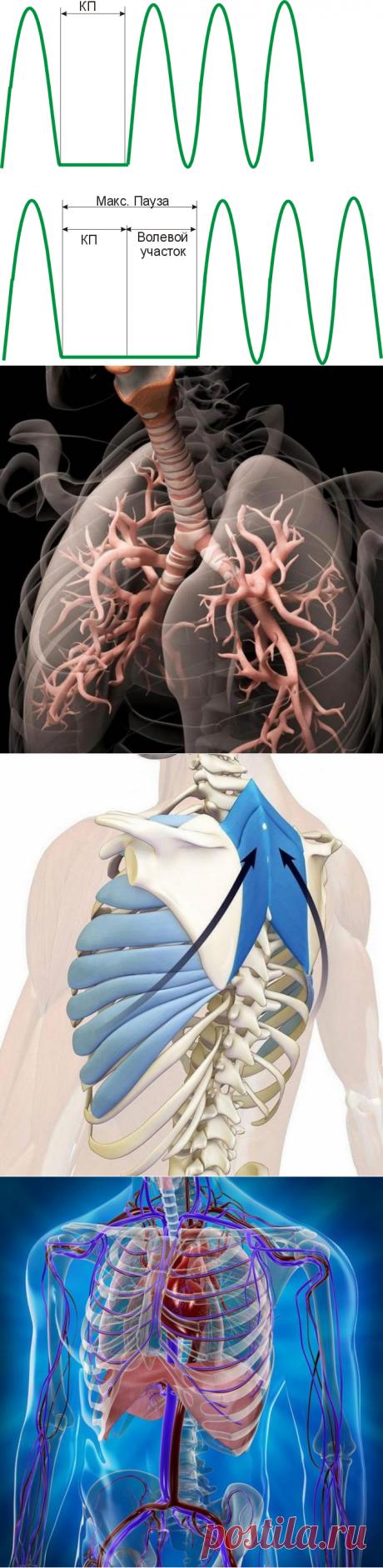 Как мы губим свое здоровье дыханием