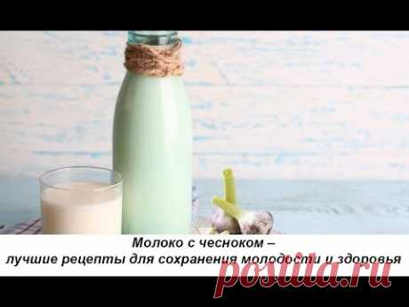 Молоко с чесноком – лучшие рецепты для сохранения молодости и здоровья