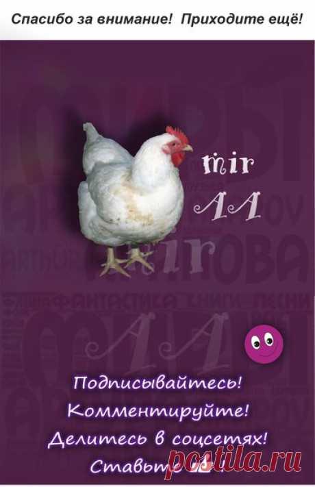 Птица-мутант | Миры Артура Арапова | Яндекс Дзен