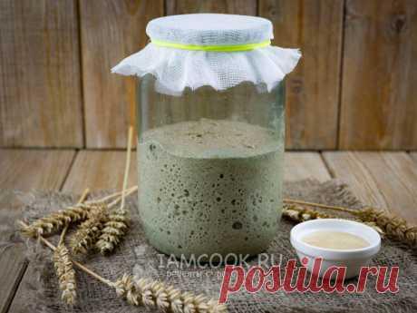 Закваска на меду для хлеба (ржаная) — рецепт с фото Выращиваем ржаную закваску с добавлением меда за три дня, на четвертые сутки уже можно ставить опару.