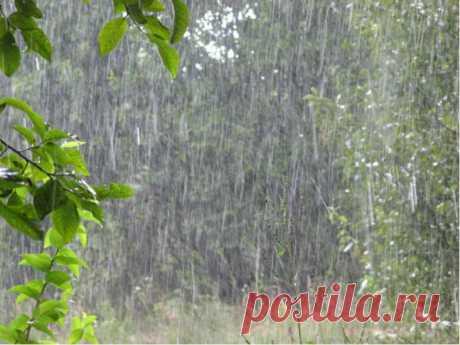 Защитные обряды в ненастную погоду.  Именно в дождливую погоду маги советуют проводить обряды защиты, которые бывают особенно сильными и действенными.  Когда небо затянуто серыми облаками, но дождь еще не начался, хорошо поставить защит…
