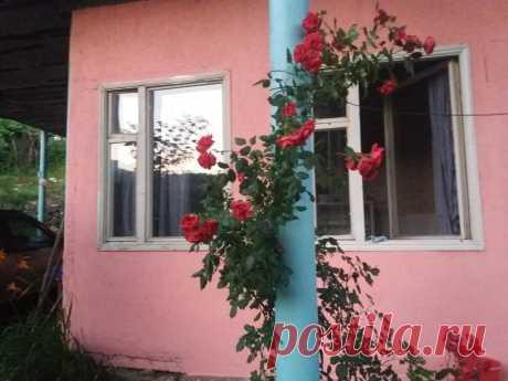 Дом для отпуска SUNNY SWEET HOME (Армения Дилижан) - Booking.com