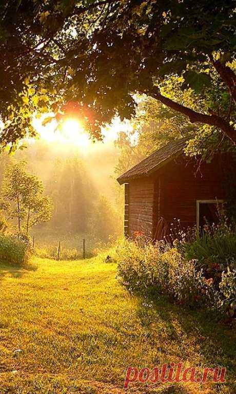 Country Sunbeams  -  Источник: anhthiennhien.vietcool.net   |  Pinterest • Всемирный каталог идей