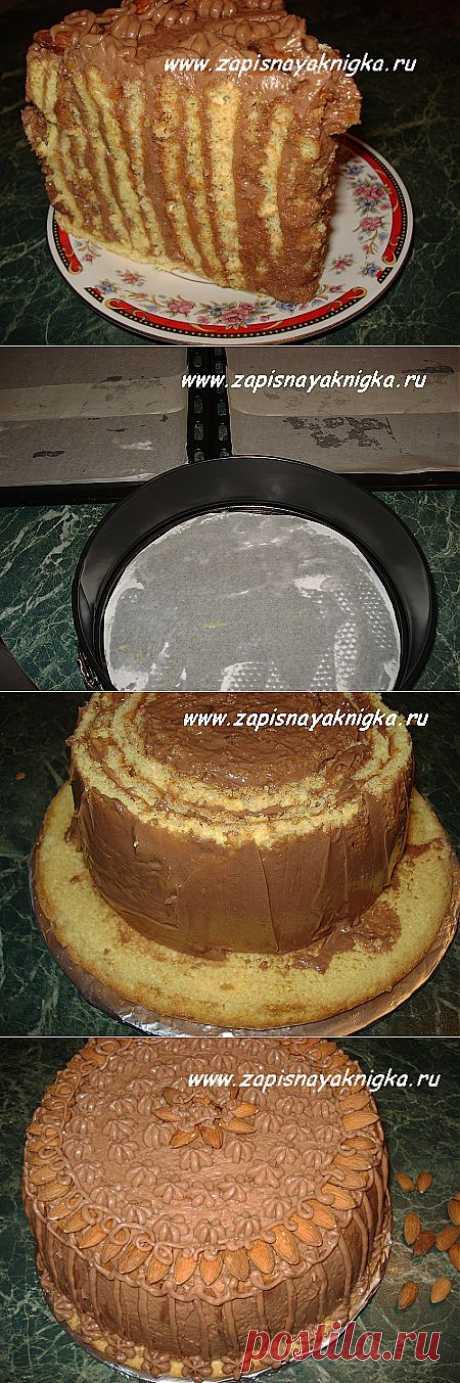 торт загадка интрига   Записная книжка рецептов Анюты