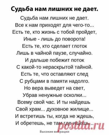 Елена Куршакова