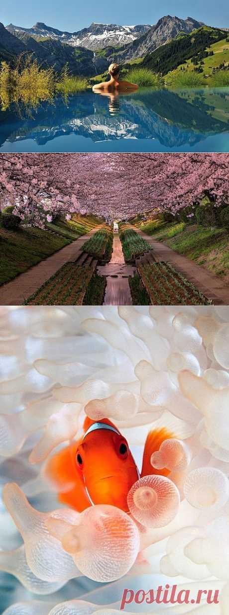 (+1) тема - Свежая подборка прекрасных и забавных фотографий | ЛЮБИМЫЕ ФОТО