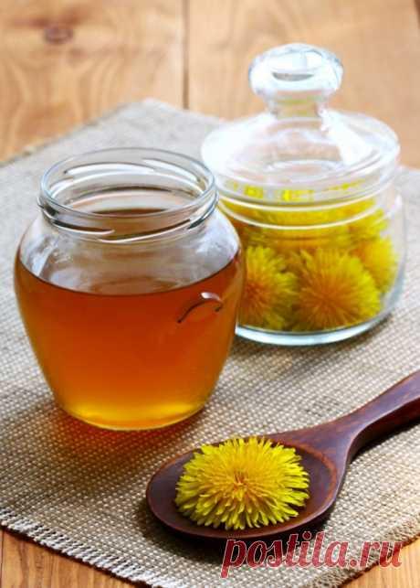 Мед из одуванчиков - польза и вред, 4 рецепта приготовления в домашних условиях