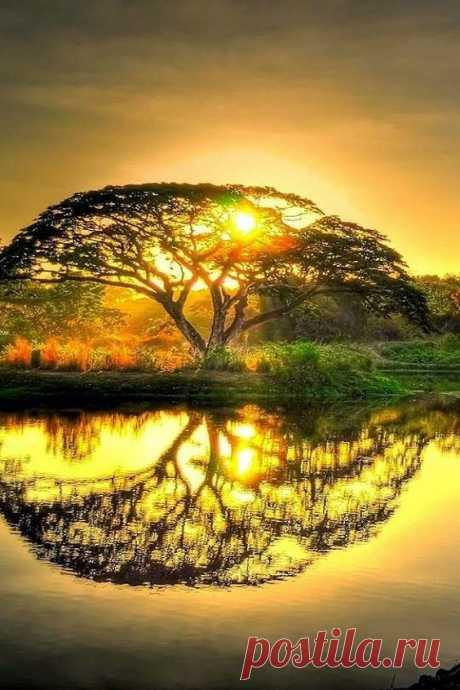 ..Когда тебе плохо -- прислушайся к Природе.                                                                                         Тишина Мира успокаивает лучше, чем миллионы ненужных Слов...