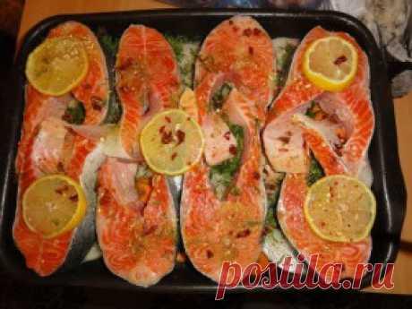 Семга запеченная в духовке. Семга чрезвычайно полезна и вкусна,  приготовленные по лучшим  из семги блюда считаются самыми настоящими  деликатесами.