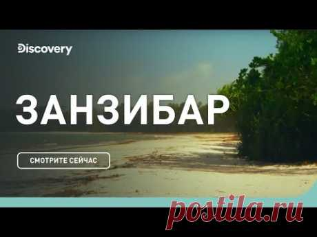 Занзибар | Неизведанные острова | Discovery Channel - YouTube