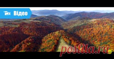 Осінні Карпати і Синевир з висоти пташиного польоту Осінні Карпати по-особливому красиві. Яскраві, різнобарвні, з ароматом прохолодної свіжості. Це відео, зняте з висоти пташиного польоту, чудово передає характер гір в осінній період.
