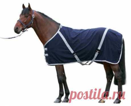 Как сшить попону для лошади своими руками: выкройки, подробная инструкция и пр