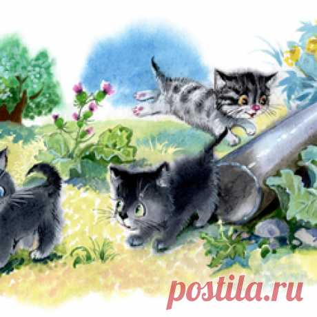 Сообщество иллюстраторов / Участники / Закревская-Аникина Наталия