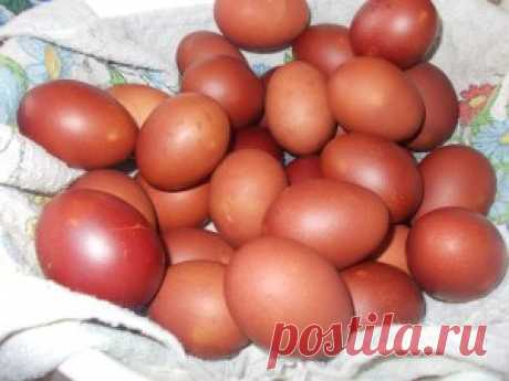 Как правильно покрасить яйца в луковой шелухе