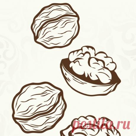 Купить Грецкого ореха масло по Лучшей Цене | Здоровое Питание Самые низкие цены на Грецкого ореха масло | Отзывы | Доставка в любую точку Украины | Магазин Здорового Питания | +380 (68) 432-35-54 приём заказов
