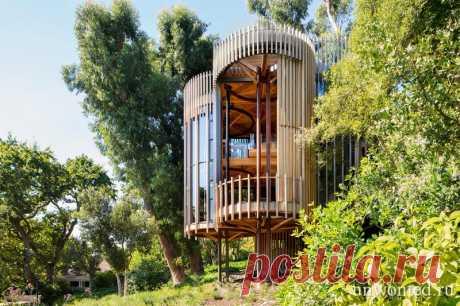 Цилиндрический дом на дереве Paarman Treehouse - unwonted.ru