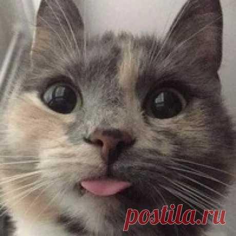 Татьяна Мымрина