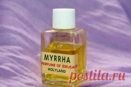 Духи с ароматом черемухи :-) (Страница 1) — Запахи природы и ароматерапия — Fragrantica Perfumes