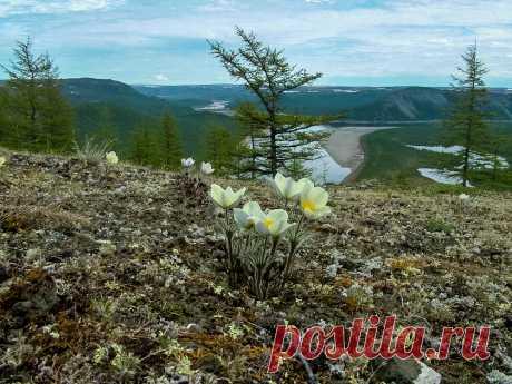 El río Kotuykan. La parte 1 - Dmitry Karpunin