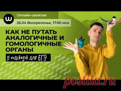Аналогичные и гомологичные органы   БИОЛОГИЯ ЕГЭ 2020   Даниил Дарвин   Вебиум