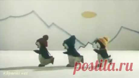 Текст песни - Три пингвина - Детские видеоклипы, mol4alena