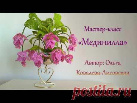 МК / МЕДИНИЛЛА (MEDINILLA) ИЗ БИСЕРА/ Мастер-класс Ольги Ковалевой-Лисовской  / Цветы из бисера