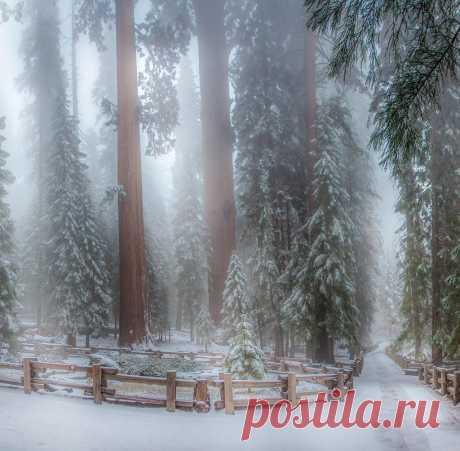 Фото Без названия. Альбом ПРИРОДА - 833 фото. Фотографии Наталья Литвинова.