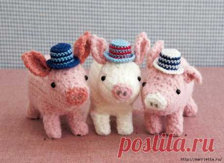 Three pigs of an amiguruma. Schemes of knitting of a toy