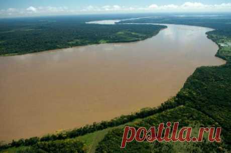 Река с секретом, или Почему через Амазонку до сих пор не построили ни одного моста
