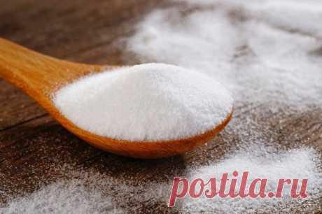 Применение соли в огороде   Огород кормилец   Яндекс Дзен