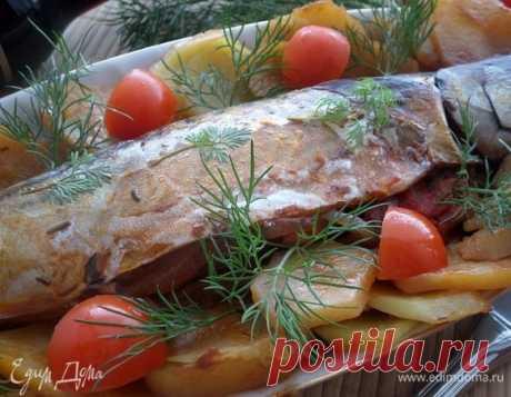 Запеченная фаршированная скумбрия . Ингредиенты: скумбрия свежая, лук репчатый, перец сладкий