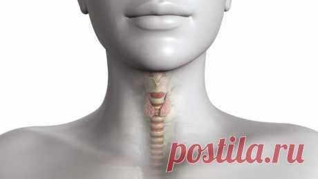 6 productos, que llaman las enfermedades de la glándula tiroides
