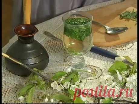 "Наталя Земна - Кропива - ""Ранок. Домашній лікар"""