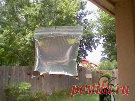 Гениальное устройство от надоедливых мух — Полезные советы