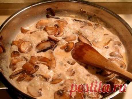 Грибные соусы на основе шампиньонов  Грибной соус №1. На оливковом масле обжарить нашинкованные грибы до золотистого цвета, добавить сливки, белый перец, соль, довести соус до кипения и кипятить на среднем огне 5-6 мин. Следить, чтобы соус не перекипел. Добавить мелко нашинкованный чеснок и кипятить еще минуту. На 2 порции понадобится 150 г грибов, 150 мл сливок, 2 зубчика чеснока. Показать полностью…