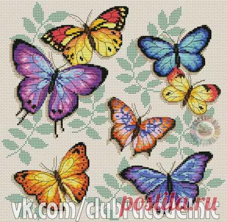 ВЫШИВКА-Бабочки